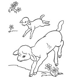 Farm Coloring Pages Easter Bunny Colouring, Easter Coloring Pages, Colouring Pages, Coloring Books, Coloring Worksheets, Sheep Outline, Running Drawing, Printable Christmas Coloring Pages, Farm Animal Coloring Pages