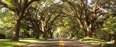 Road Trip: Creole Country, Louisiana