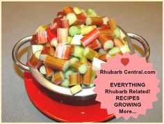 Picture of Fresh Rhubarb Cut in Pieces