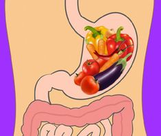 How Long Different Foods Take to Digest and Why It's Important to Know Food For Digestion, Fast And Slow, Eating Fast, General Knowledge Facts, Did You Eat, Raw Vegetables, Feeling Hungry, Types Of Food, Balanced Diet