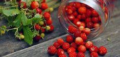 Poziomki - roślinka wielkiej mocy - rozpuszcza nawet kamień nazębny Raspberry, Strawberry, Wild Strawberries, Slim Body, Herbs, Fruit, Vegetables, Health, Food
