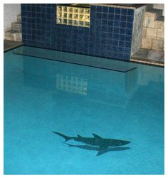 Watch this Hammerhead Shark come alive in your pool. The mosaic shark looks like it is swimming. The Hammerhead Sharks Shadowed Mosaic Tiles add depth to the design. Add Tropical mosaic Fish and a Mosaic Tile coral reef to really bring it to life. Swimming Pool Mosaics, Swimming Pools Backyard, Swimming Pool Designs, Pool Landscaping, Swimming Pool Decorations, Swiming Pool, Pool Mosaic Tiles, Mosaic Tile Designs, Glass Tiles