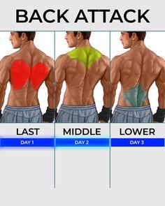 Ripped Muscle T-Shirt Gym Haut D/'Entraînement Poids Training Bodybuilding MMA poids