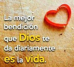 La mejor bendición que Dios te da diariamente es la vida.