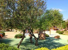 Parco giochi, arredo urbano, skate-park, percorsi fitness, spazi all'aperto... marchio ufficiale: TLF (Tecno Legno Fantoni) Vuoi saperne di più ? http://www.waterwooddesign.it/wood.html