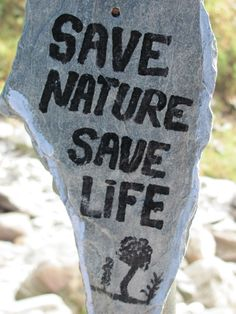 Save Nature Save Life Save Mother Earth, Mother Nature, Our Planet, Save The Planet, Tread Lightly, Save Nature, Travel Music, Meaningful Life, Never Stop Exploring