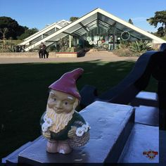 #mygnomeawayfromhome #DMR #kewgardens #princessofwalesconservatory Photos from my travels