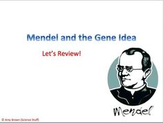 Advanced Placement (AP) Biology Review PowerPoint:  Mendel and the Gene Idea.  This is not a teaching powerpoint.   This powerpoint is suitable for Advanced Placement Biology classes that need a quick review over a particular topic.