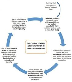 """Food Justice 
