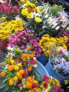 ダナンのマーケットには色とりどりの花が。ダナン 旅行・観光のおすすめスポット!