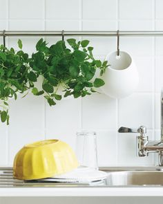 hanging herb planters out of IKEA baskets
