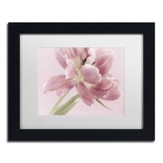Cora Niele 'Soft Pink Tulip' Matted Framed Art