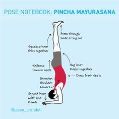 Pose Notebook: Avoid the Banana in Forearm Balance