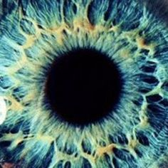 Original music by Nathaniel Moore Visual System, Photos Of Eyes, Blue Dream, Original Music, Beautiful Eyes, Iris, Eye Candy, Aesthetics, Windows