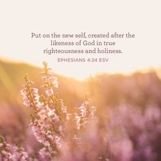 """""""Put on the new self, created after the likeness of God in true righteousness and holiness."""" –Ephesians 4:24 ESV"""
