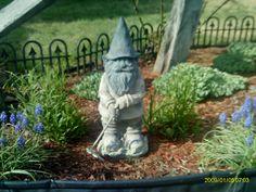 My garden must these little guys r helpful
