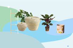 How To Fit A Plant I