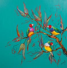 """Gouldian Finches"" by Katerina Apale. Paintings for Sale. Finches, Buy Art Online, Paintings For Sale, Online Art Gallery, Modern Art, Abstract, Birds, Artwork, Nature"