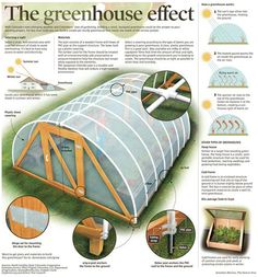 How to make the small greenhouse? There are some tempting seven basic steps to make the small greenhouse to beautify your garden. Greenhouse Effect, Build A Greenhouse, Greenhouse Gardening, Hydroponic Gardening, Container Gardening, Organic Gardening, Gardening Tips, Greenhouse Frame, Greenhouse Ideas