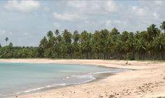 Águas de vários tons nas praias de Alagoas criam paisagem de cartão postal