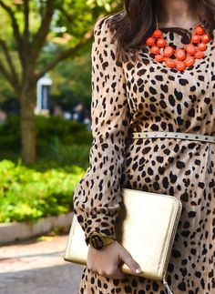 Love this necklace with the dress! @Liz Cullnan, doesn't this look familiar to how I wear my leopard print dress?!  Dear Stitch Fix Stylist, I have a leopard print dress similar to this one that I love to wear with a statement necklace. This represents some of my style.