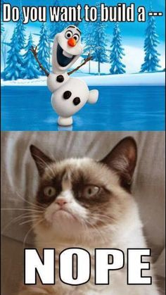 ⛄️ enjoy snow but grumpy cat and Olaf too cute to not pin! More