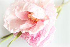 Crepe and Watercolor Flower Tutorial ~ Sweet Spring Decor