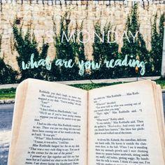 opinión,favoritos,books,reviews
