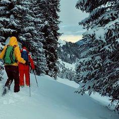 Serfaus-Fiss-Ladis (@serfausfissladis) • Instagram-Fotos und -Videos Mount Everest, Mountains, Videos, Winter, Nature, Travel, Outdoor, Instagram, Photos