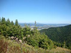 Výhľad na mesto Stará Ľubovňa