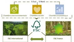 FSC Forest Stewardship Council France (FSC-FR) · Gouvernance Forest Stewardship Council, France, Design Thinking