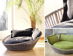 Gorgeous cat beds on ModernCat today.