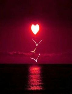 """The famous """"three words"""" - The magic number of love. The Magical Count Of Love. C & est Le Nombre De L & # Amour. Heart Wallpaper, Love Wallpaper, Wallpaper Backgrounds, Heart In Nature, Heart Art, I Love Heart, Happy Heart, Heart Images, Beautiful Sunset"""