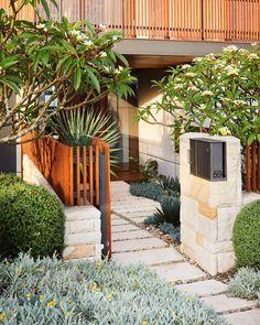 Outdoor Plants, Outdoor Spaces, Outdoor Decor, Landscape Architecture, Landscape Design, Coastal Gardens, Plant Design, Architect Design, Where The Heart Is