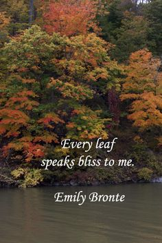 Every Leaf Speaks Bliss To Me. ~Emily Bronte...Celebrate fall!