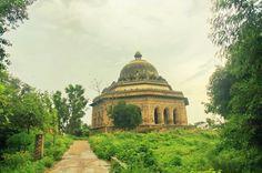 Vibrance personified - Bharthari Tomb Tijara!  #architecture   #history   #travel   #travelphotography   #photography   #rajasthan   #traveling   #tourism