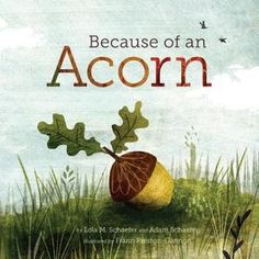 """""""Because of an Acorn"""" by Lola M Schaefer…"""