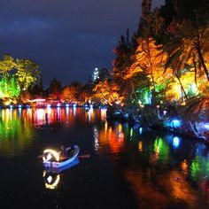 Taranaki Festival of Lights, NZ