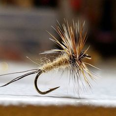 Simple mayfly - moose hair tail awesome possum dubbed body brown and grizzly hackle. #flyfishing #flytying #flytyingaddict #flytyingjunkie #fluebinding #flugbindning #dryfly #dryordie #troutfood #troutfishing #mayfly #flyfishinglifestyle #tyingflies #whitingfarms