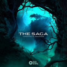 Welcome to The Saga – Cinematic Sounds! Be ready for an epic journey, the place the fireplace and brimstone rage on, and the ice lined mountains prepared the… Start Trek, Sound Samples, Sound Film, Music Composers, Orchestra, Soundtrack, Saga, Journey, Adventure