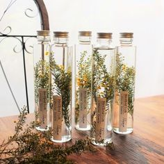 Deco Floral, Arte Floral, Witch Aesthetic, Flower Aesthetic, Nature Crafts, Dried Flowers, Diy And Crafts, Diy Projects, Creative