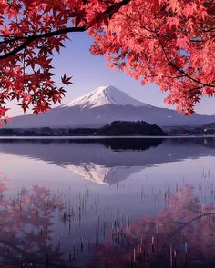 Photo by The post Autumnal portrait Mount Fuji, Japan. Photography Beach, Scenery Photography, Landscape Photography Tips, Japan Travel Photography, Eclipse Photography, Photography Books, Photography Articles, Black Photography, Photography Courses