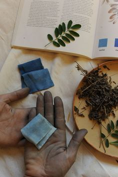 Sustainable Design Tuesday - Alabama Chanin - NATURAL DYES