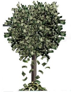 Make Money Fast, Make Money Online, Dollar Money, Success Principles, Gold Money, Money Trees, How To Dry Basil, Fundraising, Wealth