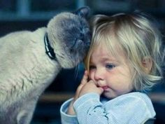 Kitty and baby love...