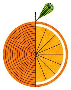 Orange - Lan Truong
