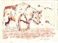 Der Wolf - Zeichnung von Susanne Haun