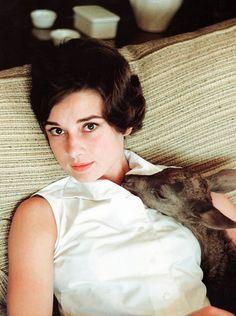 Audrey Hepburn with her pet deer, Ip.