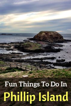 Complete guide to all the Phillip Island Attractions including penguins, wildlife, chocolate, wine and beaches. Full list of things to do in Phillip Island Travel With Kids, Family Travel, Australia Travel Guide, Visit Australia, Stuff To Do, Things To Do, New Zealand Travel Guide, Phillips Island, Visit Victoria