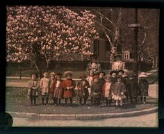 School children with teachers under Magnolia trees. (1910)
